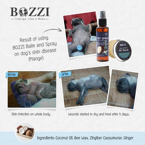 Natural healing pet spray BOZZI